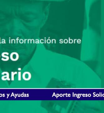 Aporte Ingreso Solidario