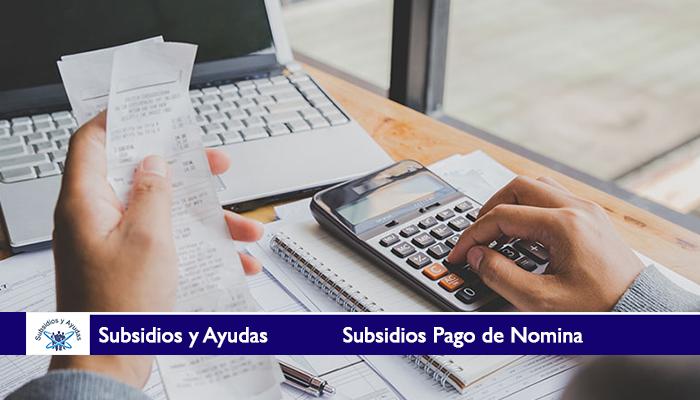 Subsidios Pago de Nomina